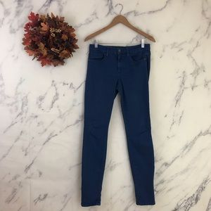 Joes Skinny Visionaire Jeans in Blueberry
